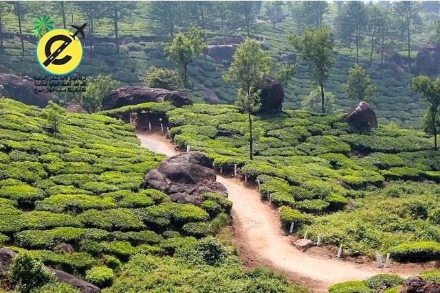 افضل 5 وجهات لقضاء شهر العسل في الهند