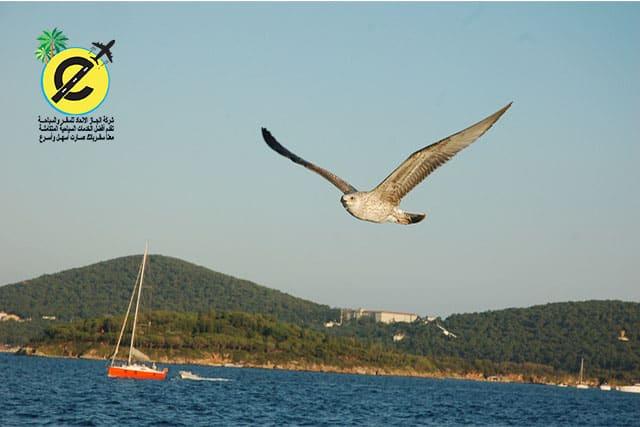 افضل 5 اماكن تصلح للرحلات السياحية في تركيا للعرسان والعوائل
