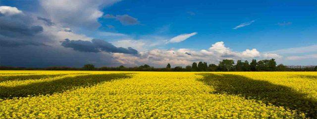 جولة سياحية في أوكرانيا لمدة 10 أيام