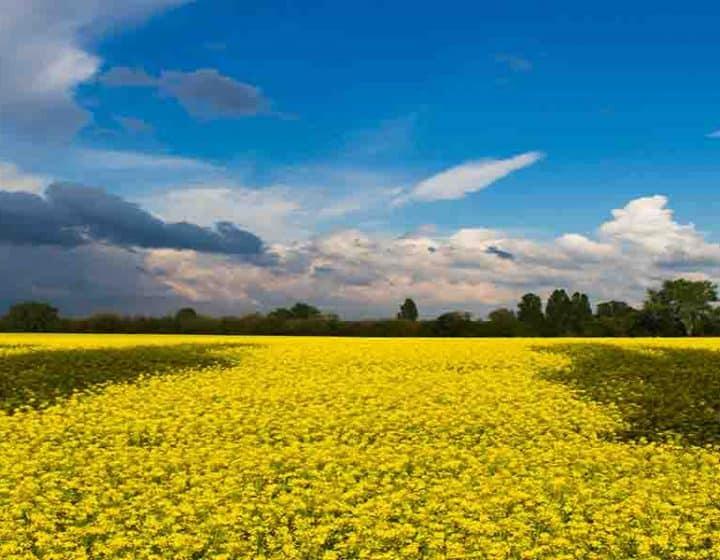 برنامج سياحي الى أوكرانيا لمدة 10 ايام