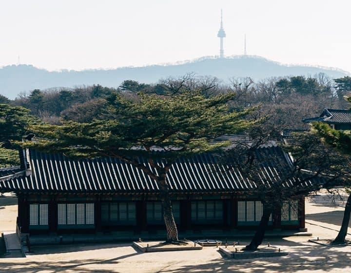 عرض سياحي في كوريا الجنوبية لمدة 10 أيام